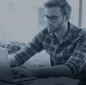 Professional essay writing support 24 by 7